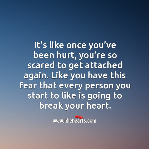 It's like once you've been hurt, you're so scared to get attached again. Image