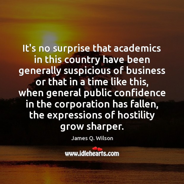 It's no surprise that academics in this country have been generally suspicious Image