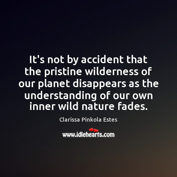 It's not by accident that the pristine wilderness of our planet disappears Image
