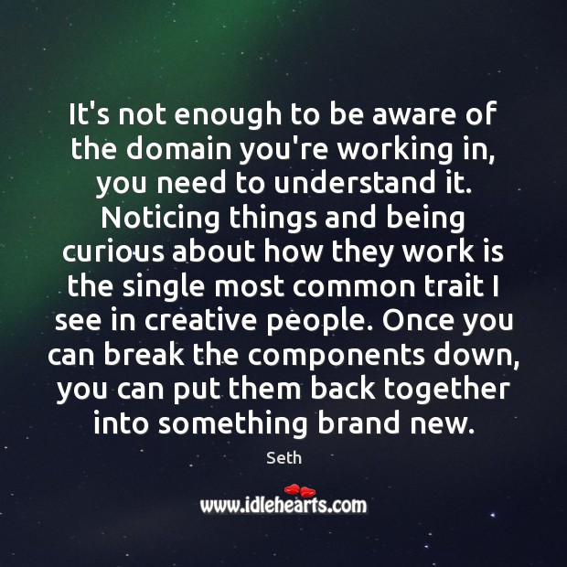 It's not enough to be aware of the domain you're working in, Seth Picture Quote