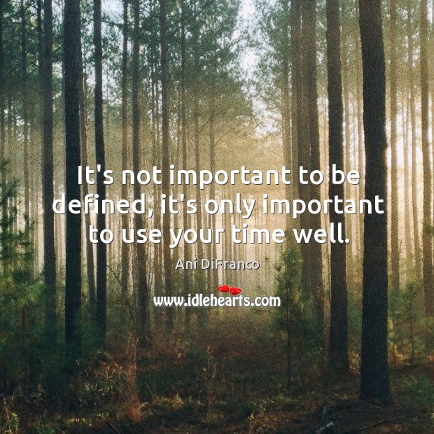 It's not important to be defined, it's only important to use your time well. Ani DiFranco Picture Quote