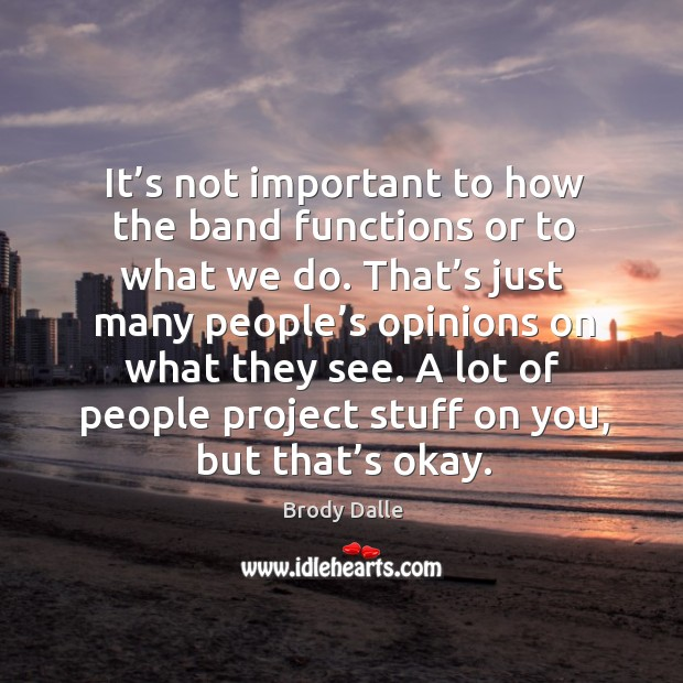 It's not important to how the band functions or to what we do. Brody Dalle Picture Quote