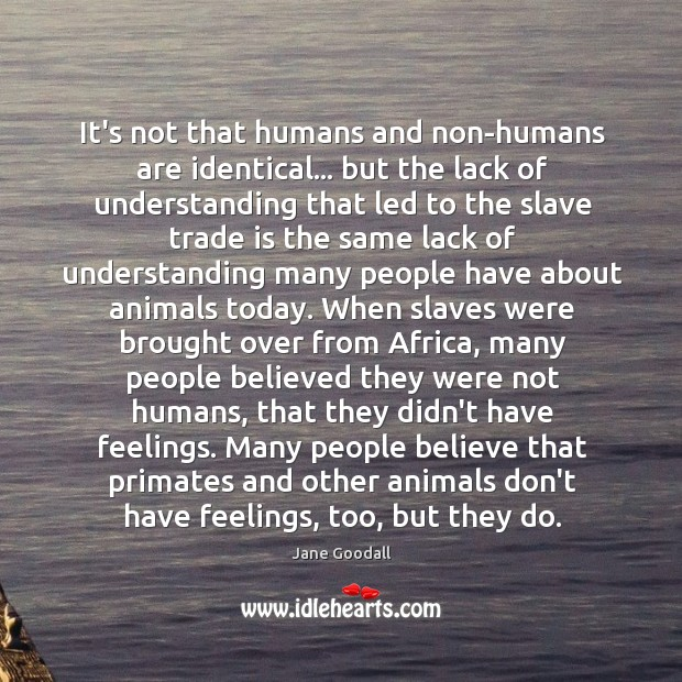 Image, It's not that humans and non-humans are identical… but the lack of