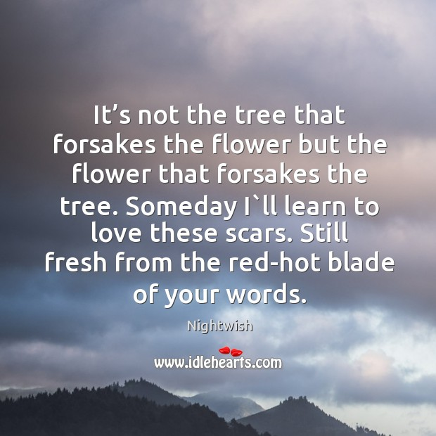It's not the tree that forsakes the flower but the flower that forsakes the tree. Image