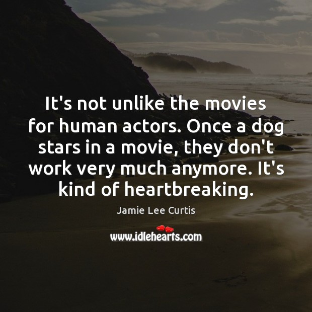It's not unlike the movies for human actors. Once a dog stars Image