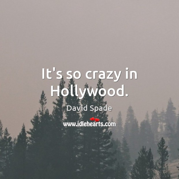 David Spade Picture Quote image saying: It's so crazy in Hollywood.
