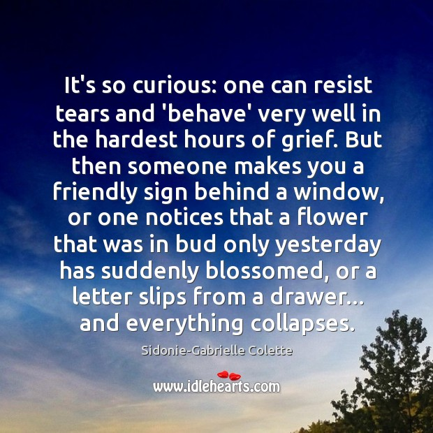 It's so curious: one can resist tears and 'behave' very well in Sidonie-Gabrielle Colette Picture Quote