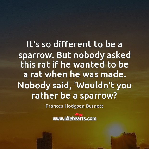 It's so different to be a sparrow. But nobody asked this rat Frances Hodgson Burnett Picture Quote