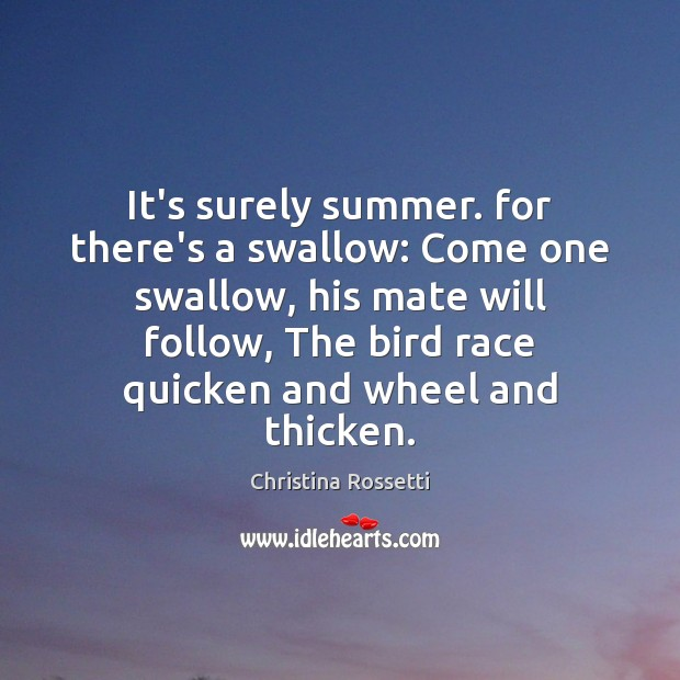 It's surely summer. for there's a swallow: Come one swallow, his mate Christina Rossetti Picture Quote