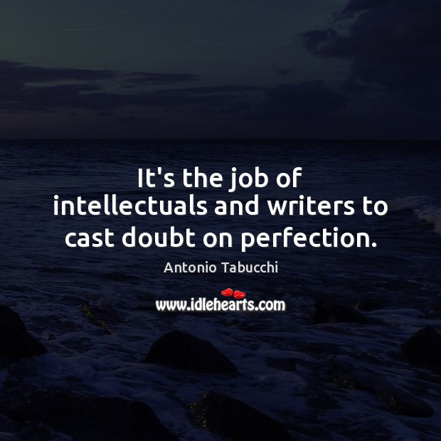 Image, It's the job of intellectuals and writers to cast doubt on perfection.