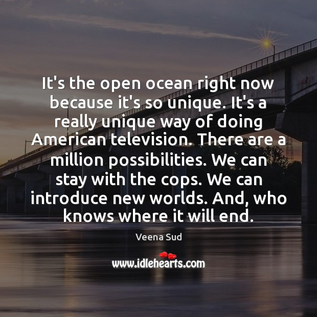It's the open ocean right now because it's so unique. It's a Veena Sud Picture Quote