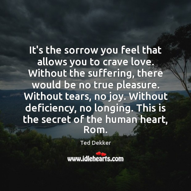 It's the sorrow you feel that allows you to crave love. Without Image