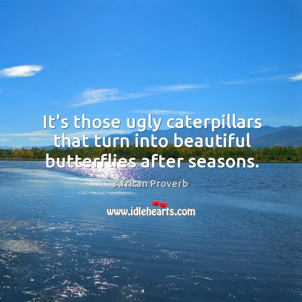 Image, It's those ugly caterpillars that turn into beautiful butterflies after seasons.