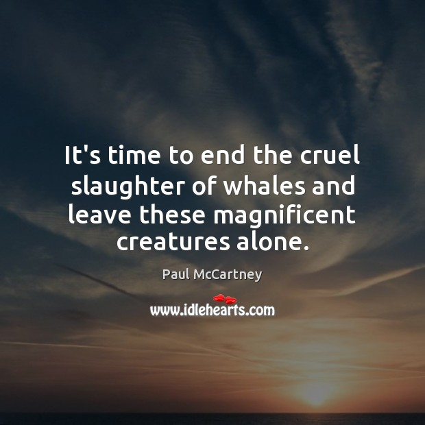 It's time to end the cruel slaughter of whales and leave these Paul McCartney Picture Quote