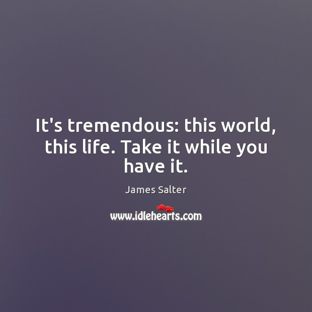 It's tremendous: this world, this life. Take it while you have it. James Salter Picture Quote