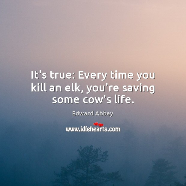 It's true: Every time you kill an elk, you're saving some cow's life. Edward Abbey Picture Quote