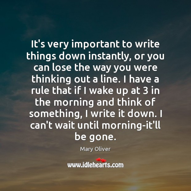 It's very important to write things down instantly, or you can lose Mary Oliver Picture Quote