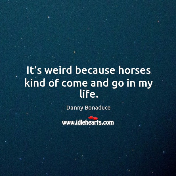 It's weird because horses kind of come and go in my life. Image
