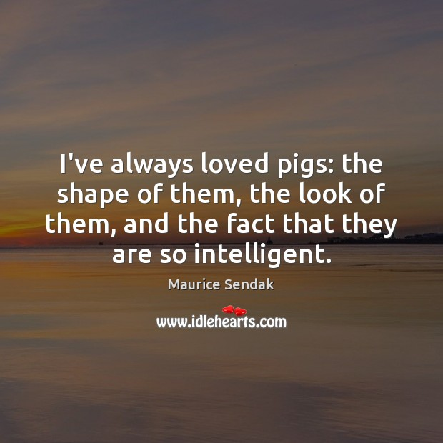I've always loved pigs: the shape of them, the look of them, Maurice Sendak Picture Quote