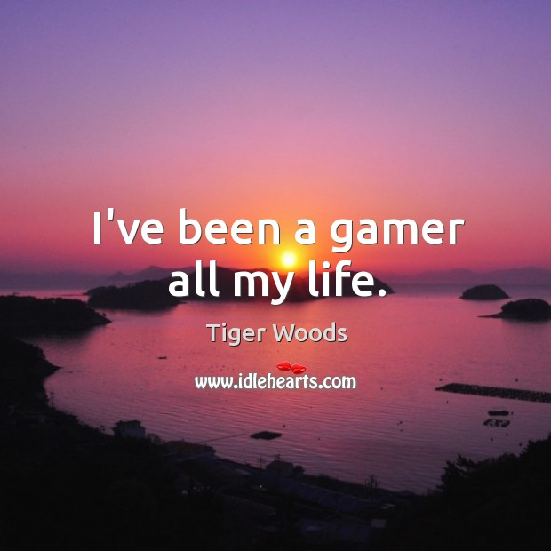 I've been a gamer all my life. Image