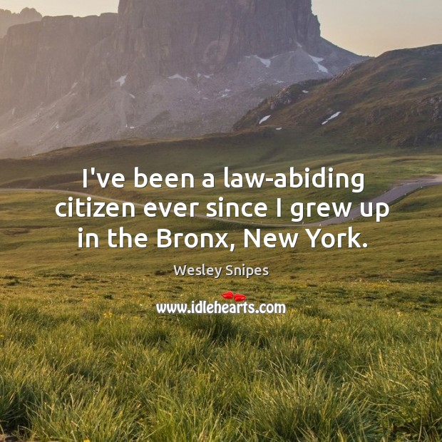 I've been a law-abiding citizen ever since I grew up in the Bronx, New York. Wesley Snipes Picture Quote