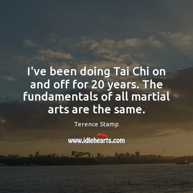 Image, I've been doing Tai Chi on and off for 20 years. The fundamentals
