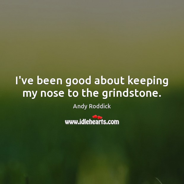 I've been good about keeping my nose to the grindstone. Andy Roddick Picture Quote