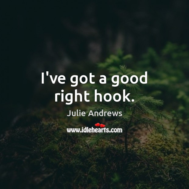 I've got a good right hook. Julie Andrews Picture Quote