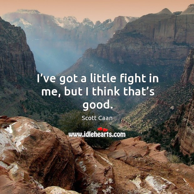 I've got a little fight in me, but I think that's good. Scott Caan Picture Quote