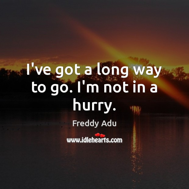 I've got a long way to go. I'm not in a hurry. Freddy Adu Picture Quote