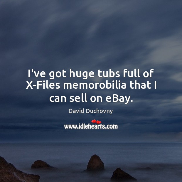 I've got huge tubs full of X-Files memorobilia that I can sell on eBay. David Duchovny Picture Quote