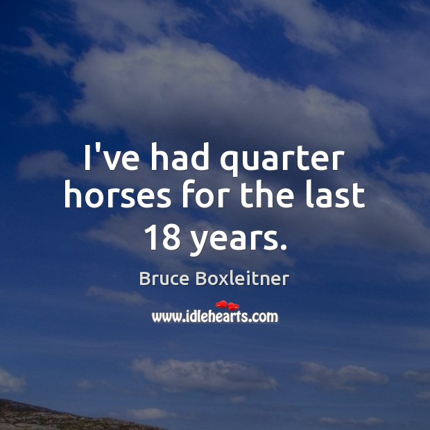 Image, I've had quarter horses for the last 18 years.