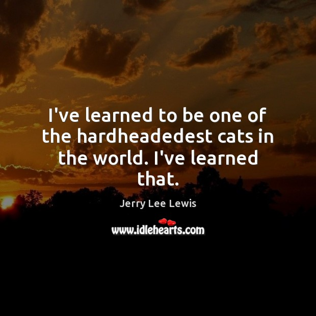 I've learned to be one of the hardheadedest cats in the world. I've learned that. Image