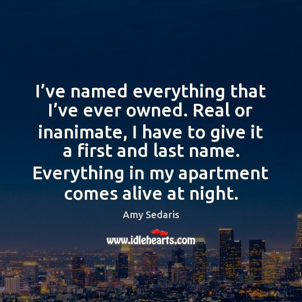 I've named everything that I've ever owned. Real or inanimate, Amy Sedaris Picture Quote