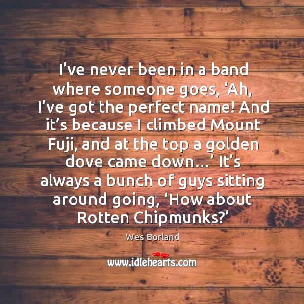 I've never been in a band where someone goes, 'ah, I've got the perfect name! Wes Borland Picture Quote
