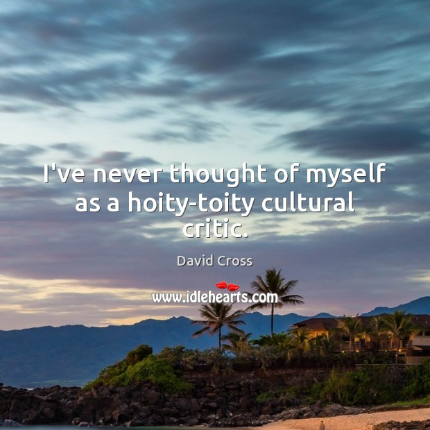 I've never thought of myself as a hoity-toity cultural critic. David Cross Picture Quote