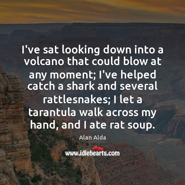 I've sat looking down into a volcano that could blow at any Alan Alda Picture Quote