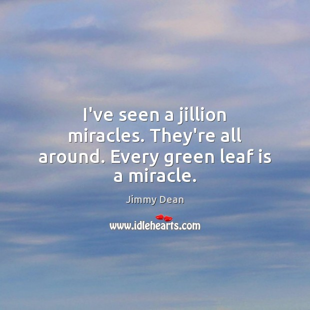 Image, I've seen a jillion miracles. They're all around. Every green leaf is a miracle.