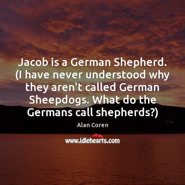 Jacob is a German Shepherd. (I have never understood why they aren't Alan Coren Picture Quote