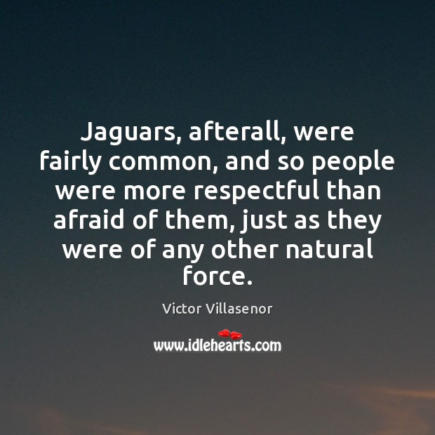 Jaguars, afterall, were fairly common, and so people were more respectful than Image