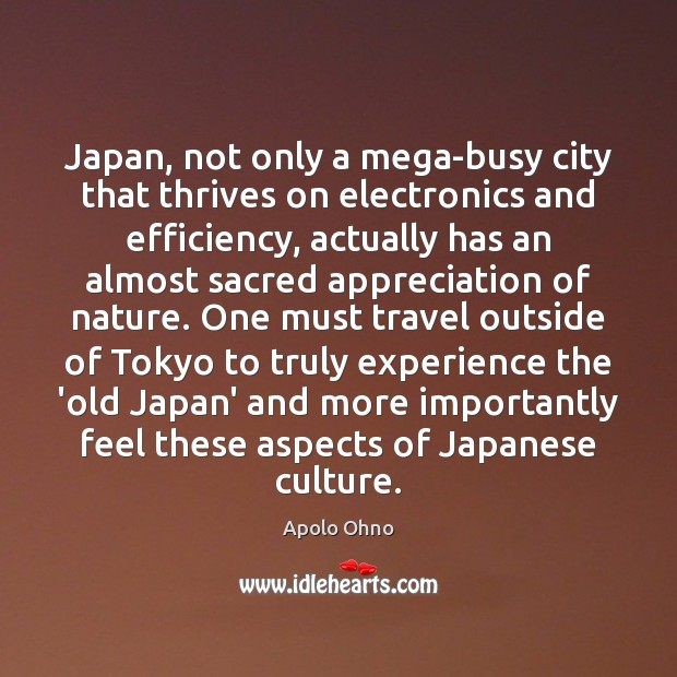 Japan, not only a mega-busy city that thrives on electronics and efficiency, Image