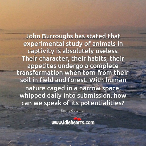 Image, John Burroughs has stated that experimental study of animals in captivity is