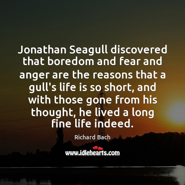 Jonathan Seagull discovered that boredom and fear and anger are the reasons Image