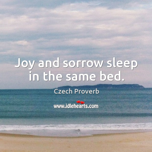 Joy and sorrow sleep in the same bed. Czech Proverbs Image