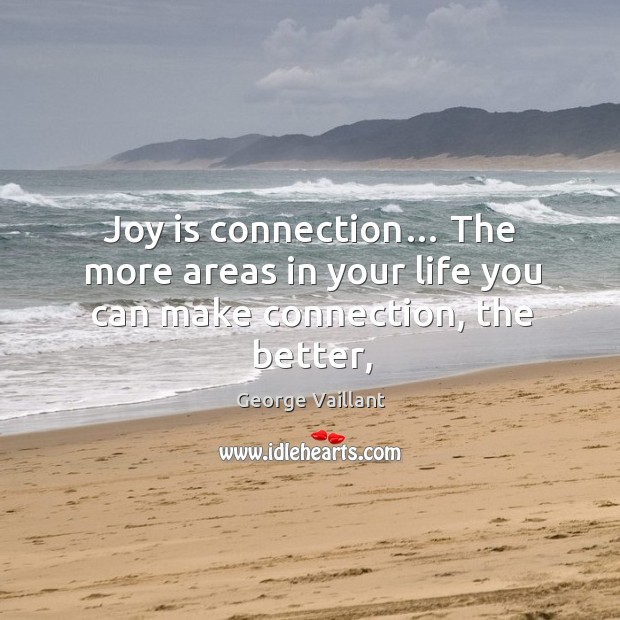 Joy is connection… The more areas in your life you can make connection, the better, Image