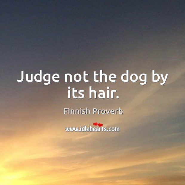 Judge not the dog by its hair. Finnish Proverbs Image