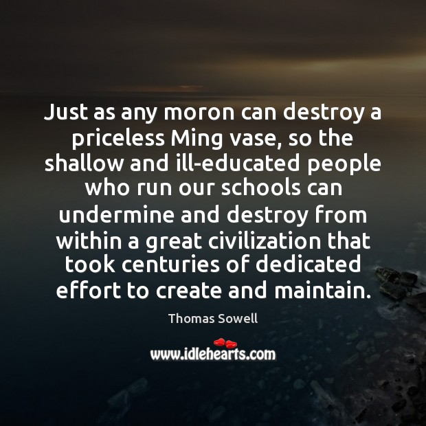 Just as any moron can destroy a priceless Ming vase, so the Image