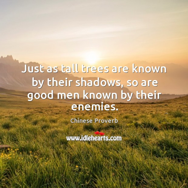 Just as tall trees are known by their shadows, so are good men Image