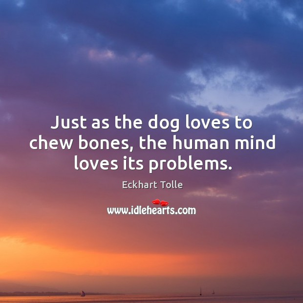 Just as the dog loves to chew bones, the human mind loves its problems. Image