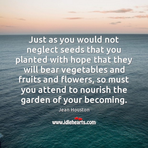 Just as you would not neglect seeds that you planted with hope Image